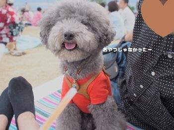 花火大会20160723-8