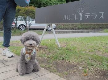 軽井沢20160810-9