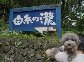 白糸の滝20160810-1