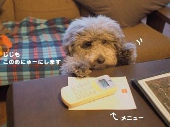 うちのこ記念旅行玉響の風20170307-15