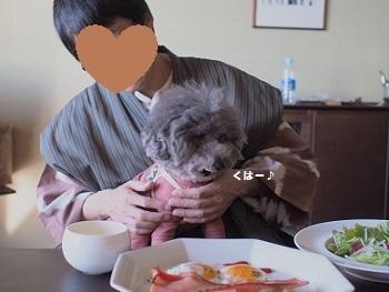うちのこ記念旅行玉響の風朝食20170308-4