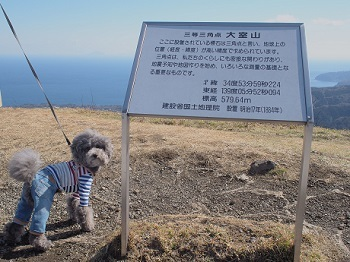 うちのこ記念旅行大室山20170308-19