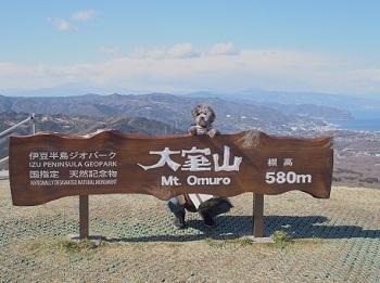 うちのこ記念旅行大室山20170308-24