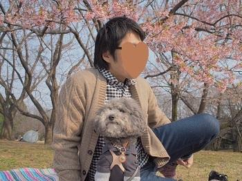 お花見20170319-3