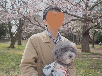お花見20170402-9