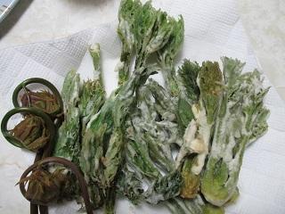 山菜のてんぷら