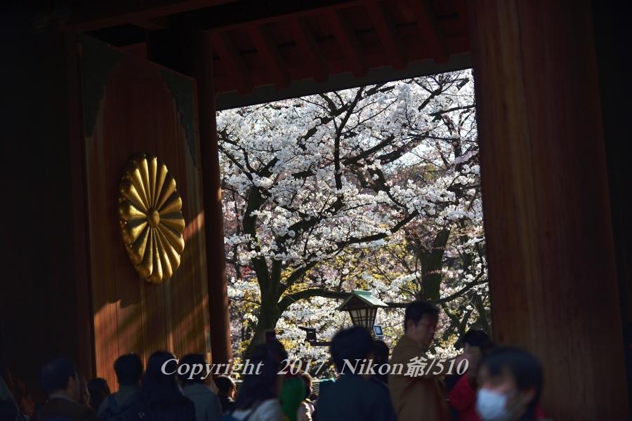 靖国神社2SN_filtered