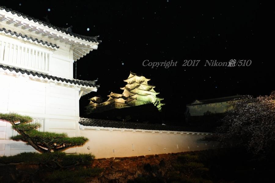 姫路城 ライトアップ (12)Sn