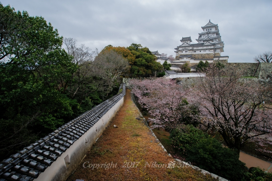 姫路城 D3 (5)S17SN
