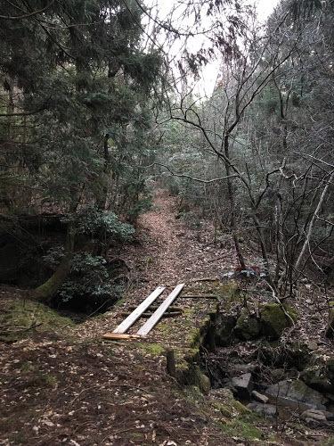 昼ヶ岳/登山道