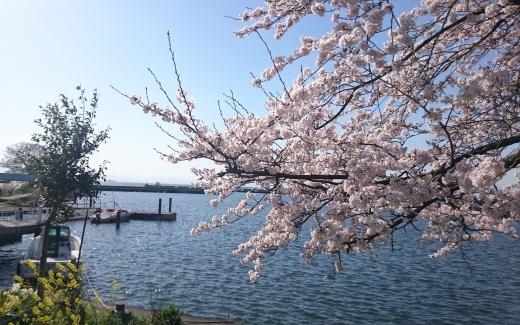 琵琶湖 01