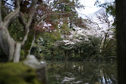 2017年 4月 阿自岐神社 06