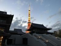 夕暮れの増上寺