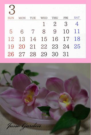 カレンダー3月ピンクシンビジウム
