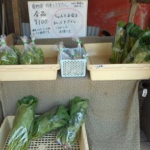 1円で野菜は作れない。20170404