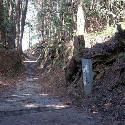 170217山の辺の道