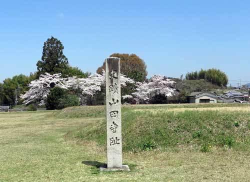 170413山田寺跡