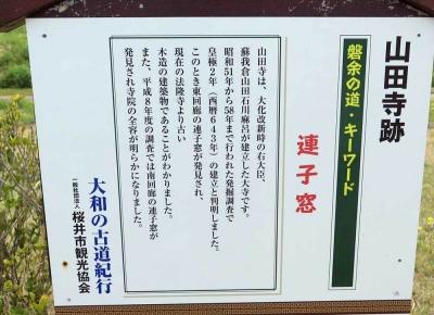 170413山田寺跡3