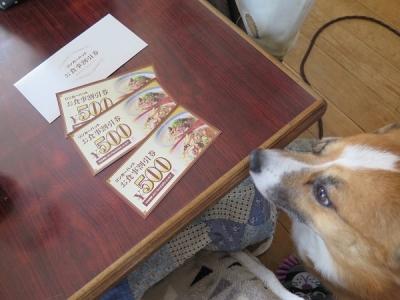 リンガーハットのお食事券