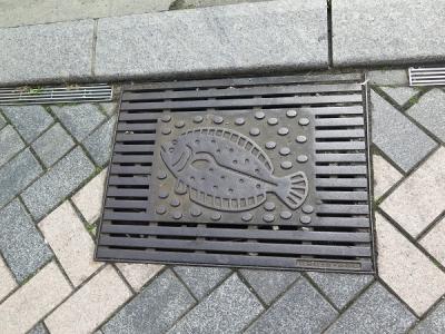 浜松 ヒラメ 側溝の蓋