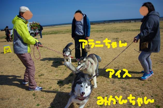 BAAA2613.jpg