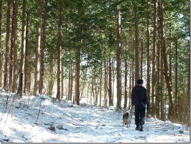 201701冬旅信州12森散歩-05
