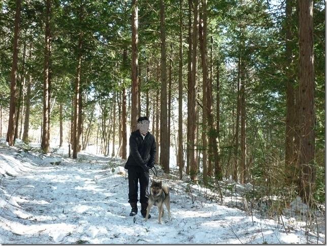 201701冬旅信州12森散歩-06