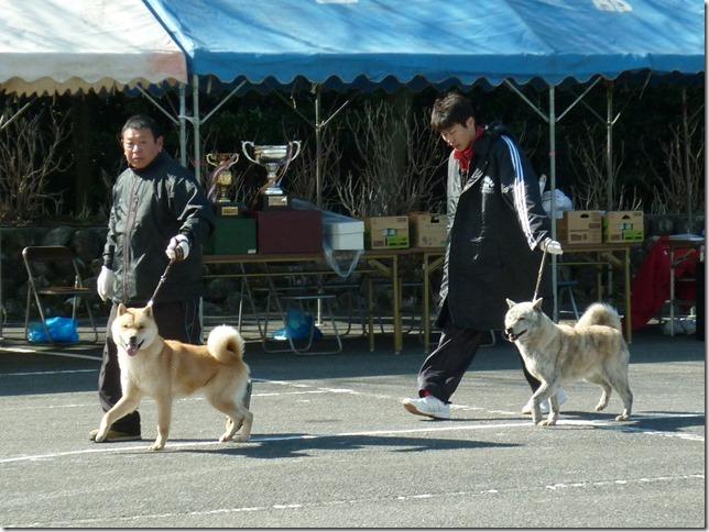 201702NKC三重親睦展02-10