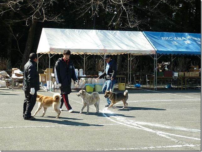 201702NKC三重親睦展02-11