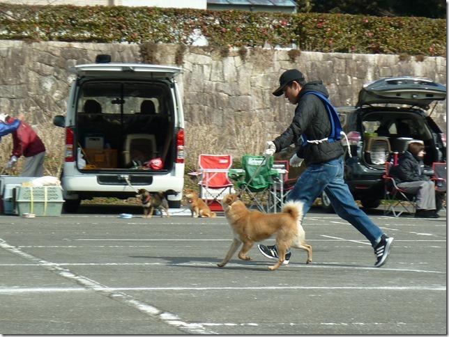 201702NKC三重親睦展03-22