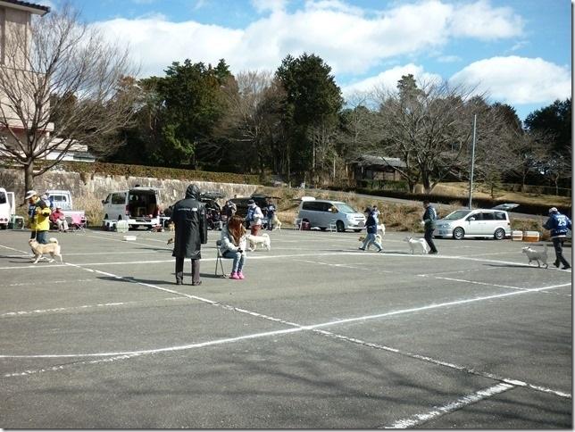 201702NKC三重親睦展04-05