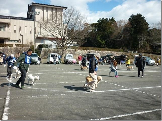 201702NKC三重親睦展04-11