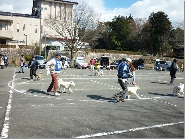 201702NKC三重親睦展04-12