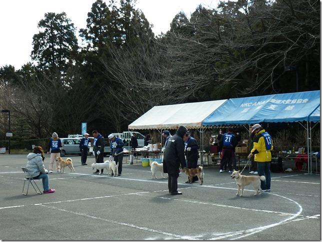 201702NKC三重親睦展04-13