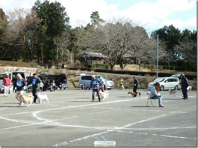 201702NKC三重親睦展04-14
