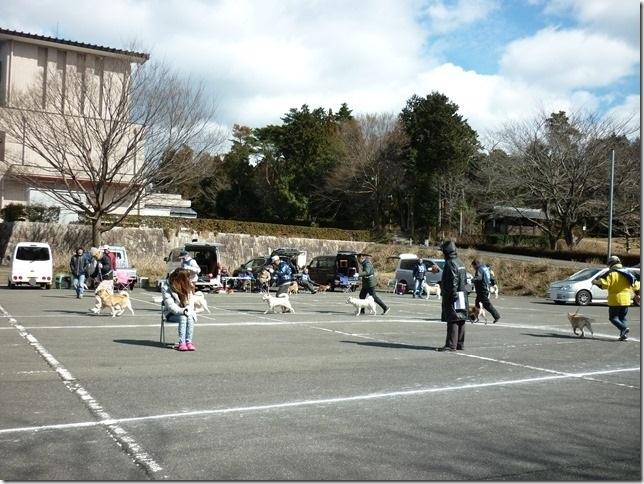 201702NKC三重親睦展04-15