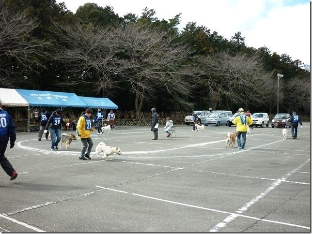 201702NKC三重親睦展05-06