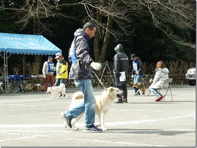 201702NKC三重親睦展05-11