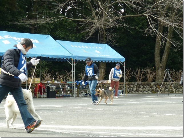 201702NKC三重親睦展05-14