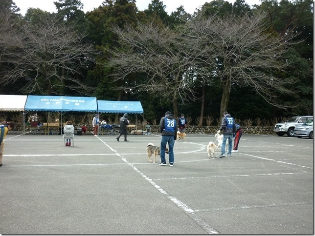 201702NKC三重親睦展05-16