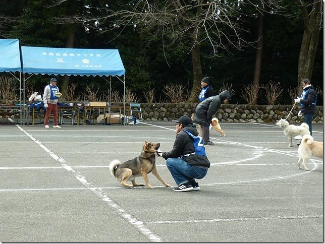 201702NKC三重親睦展05-17
