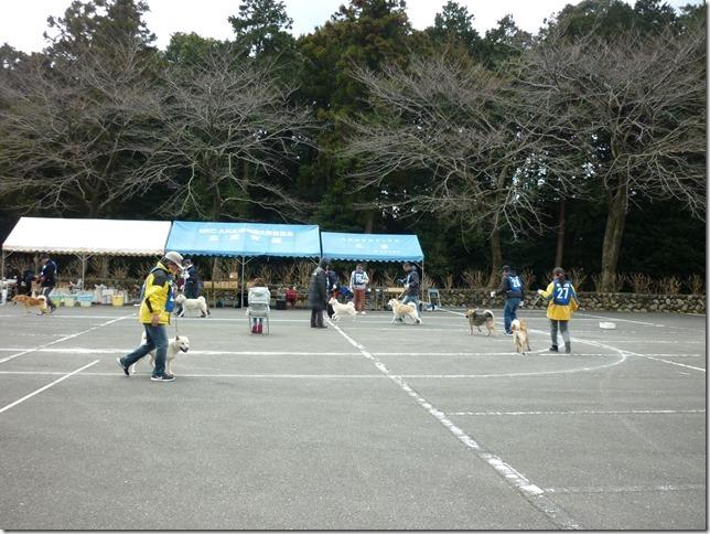 201702NKC三重親睦展05-20