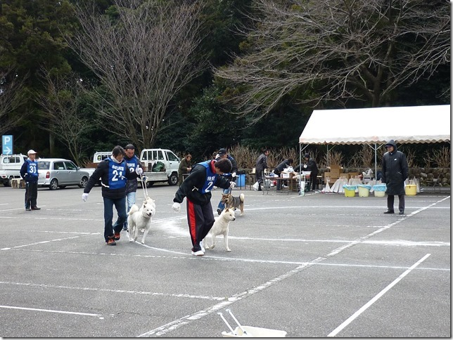 201702NKC三重親睦展05-38