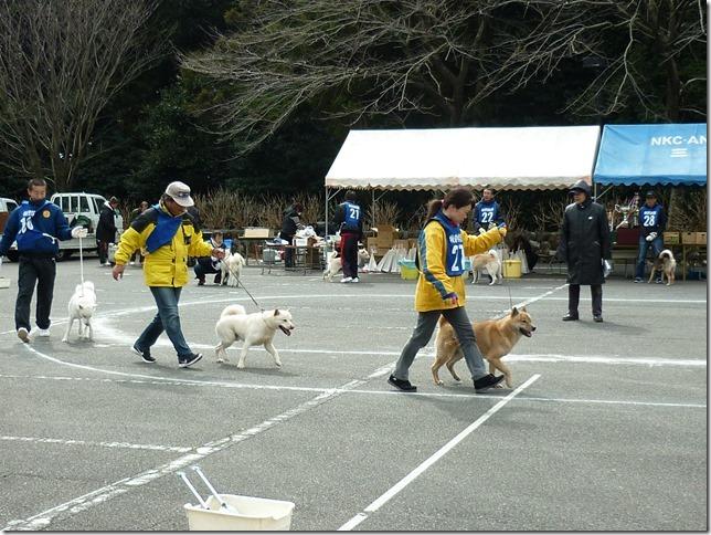 201702NKC三重親睦展05-42