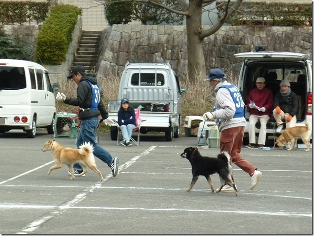 201702NKC三重親睦展07-04