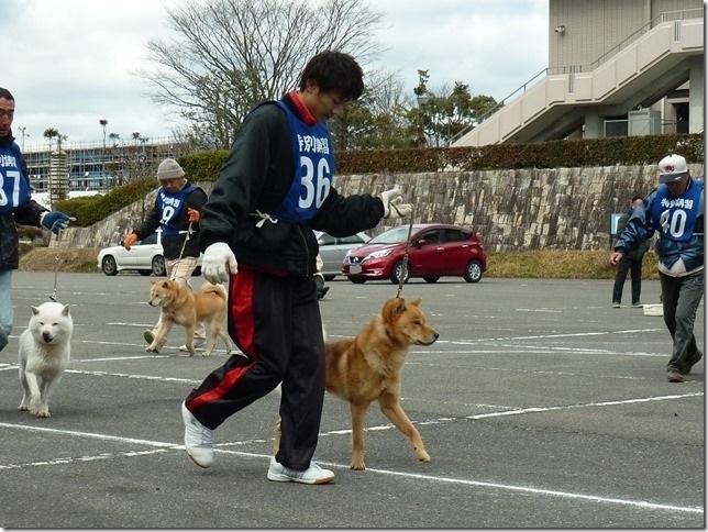 201702NKC三重親睦展08-09