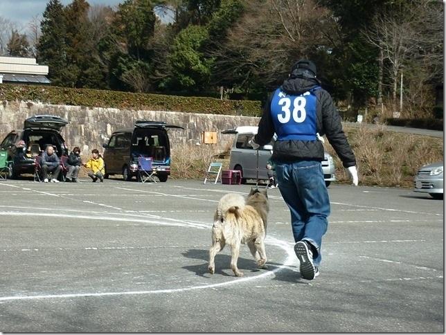 201702NKC三重親睦展08-17