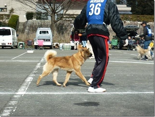 201702NKC三重親睦展08-29