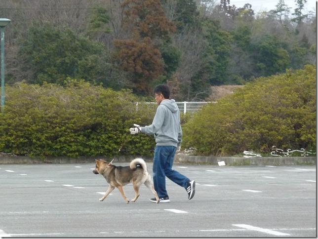 20170305歩様トレーニング-04