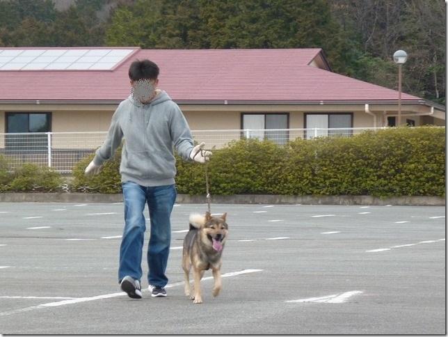 20170305歩様トレーニング-05